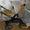 Продам коляску - трансформер #229632
