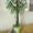 Цветы и деревья из бисера ручная работа.недорого.делаю на заказ, быстро #975080